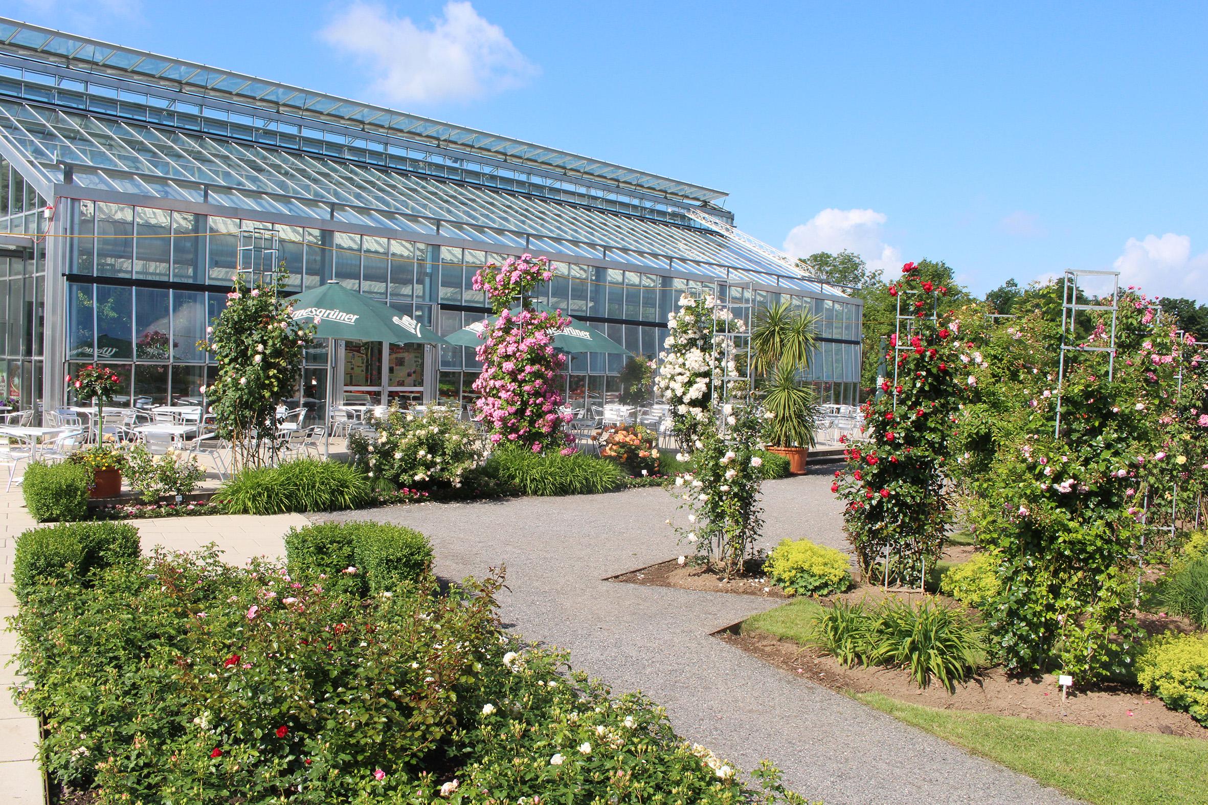 Informationszentrum Rose