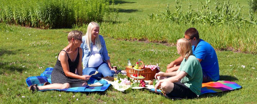Picknick im Park und öffentliche Rosariumsführungen